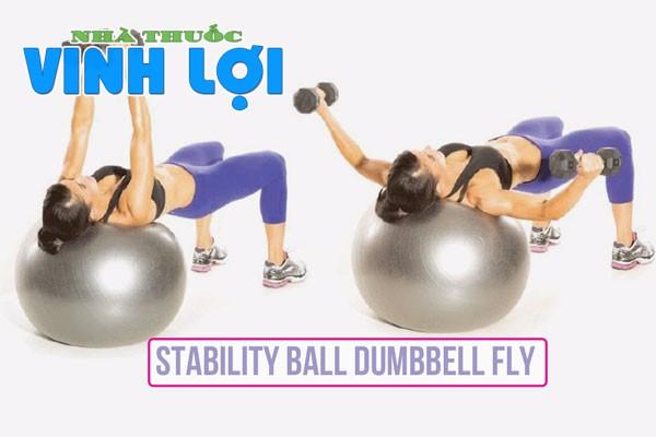 Stability balldumbbe