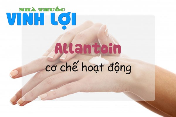 Cơ chế hoạt động trên da của Allantoin