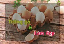 Mặt nạ trứng gà - phương pháp làm đẹp tại nhà