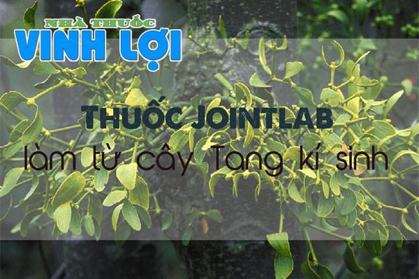 Tang kí sinh là loại cây được phân bố chủ yếu ở các nước thuộc châu Á