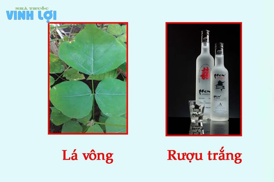Chữa bệnh trĩ bằng lá vông và rượu trắng