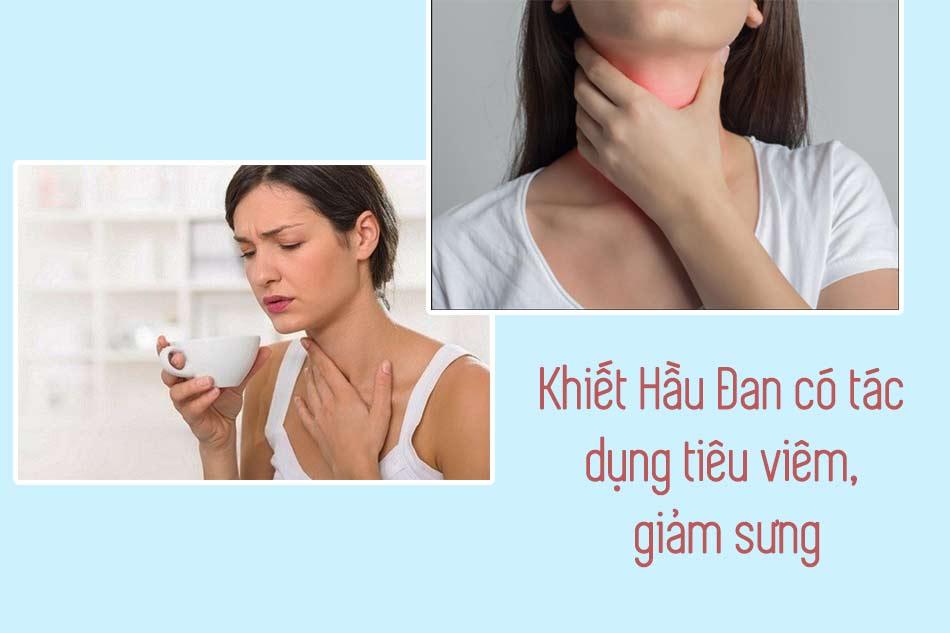 Khiết Hầu Đan có tác dụng tiêu viêm, giảm sưng