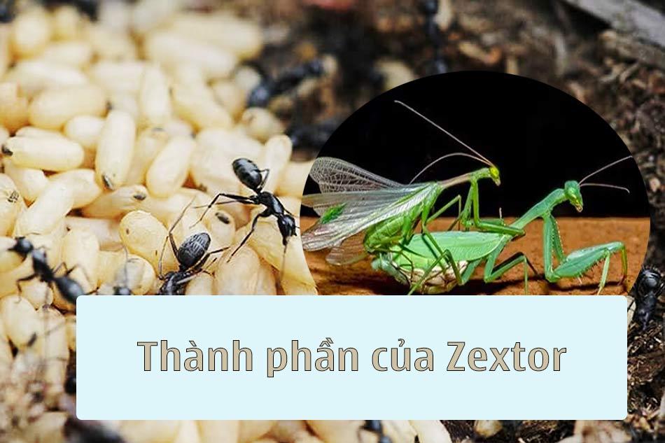 Thành phần của Zextor