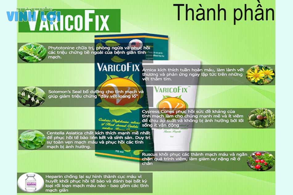 Thành phần của thuốc bôi giãn tĩnh mạch Varicofix