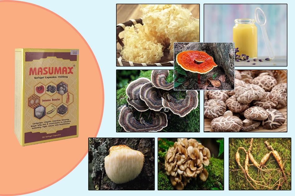 Masumax có nguồn gốc từ thiên nhiên