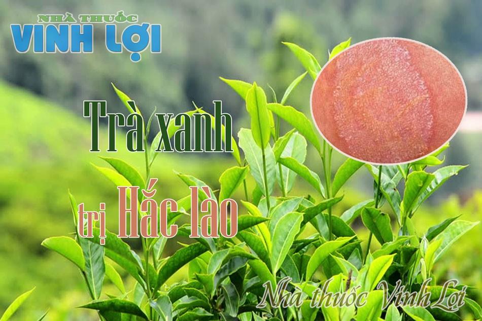 Cách chữa hắc lào ở vùng nhạy cảm bằng lá trà xanh
