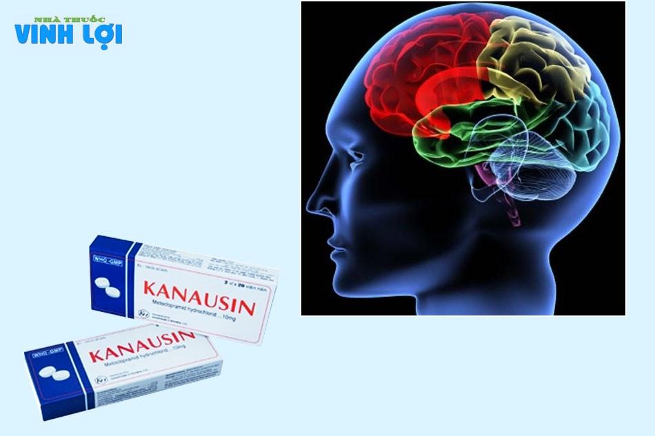 Một số lưu ý khi dùng Kanausin
