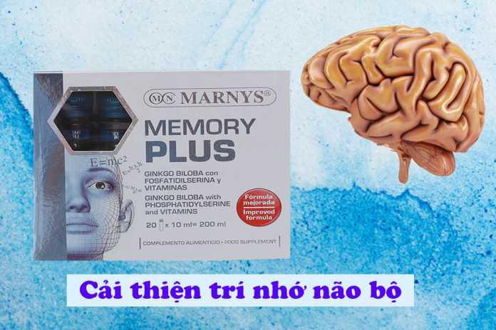 Memory Plus cải thiện trí nhớ não bộ
