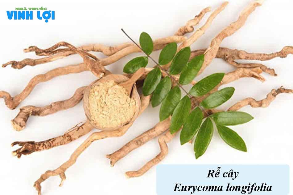 Hoạt chất Eurycoma Longifolia có trong Sâm Alipas